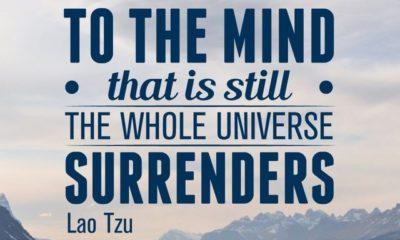 Still Your Mind