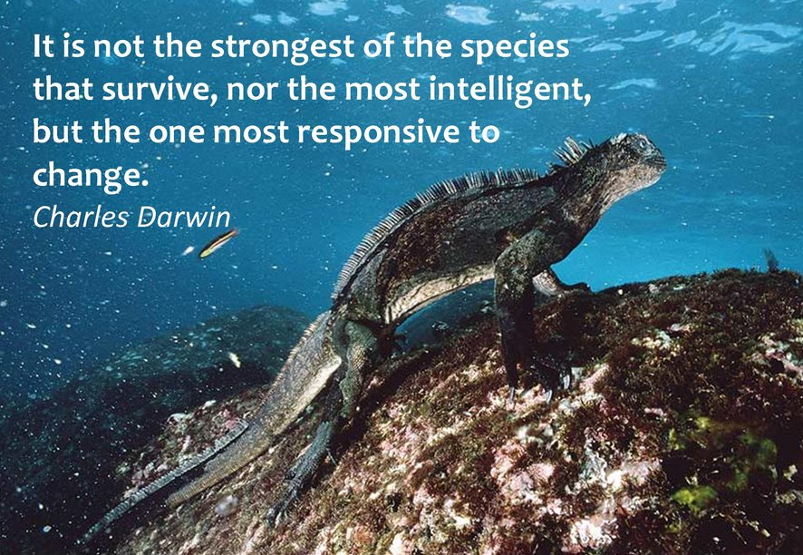 Stronger Of The Species Charles Darwin Daily Quotes Sayings Pictures