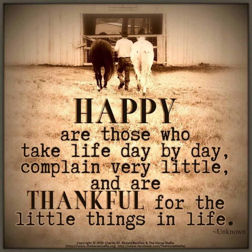 Thankful For The Little Things Life Daily Quotes Sayings Pictures