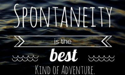 The Best Adventure