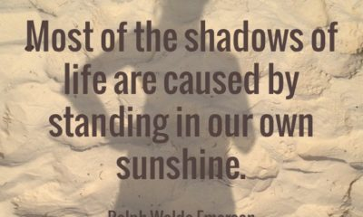 The Shadows Of Life