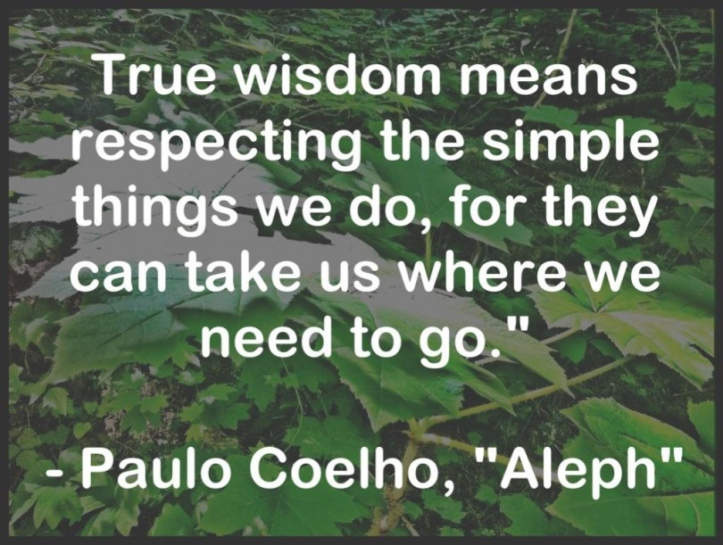 True wisdom means respecting the simple things we do, for they can take us where we need to go. Paulo Coelho - Aleph