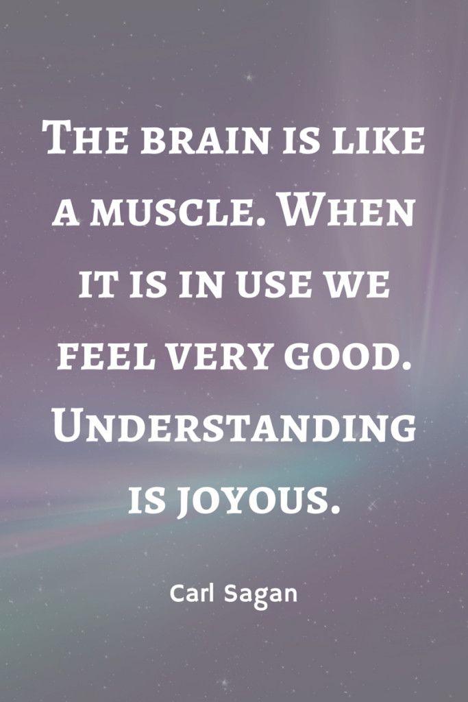 Understanding Is Joyous