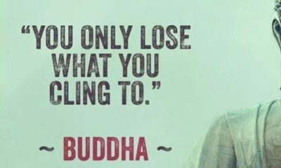 What You Cling To