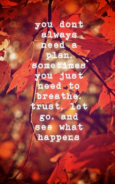 You Dont Always Need A Plan