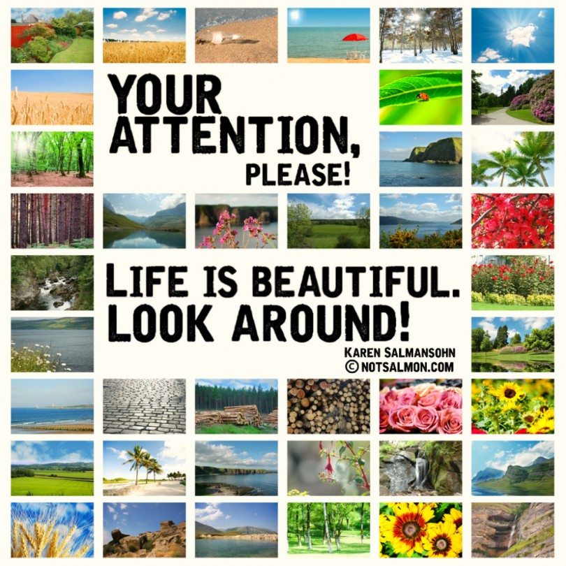 Your attention, please! Life is beautiful. Look around!