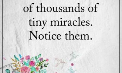 1487030655 386 Tiny Miracles