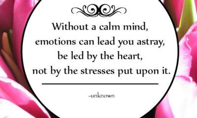 A Calm Mind