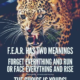 F E A R Has Two Meanings