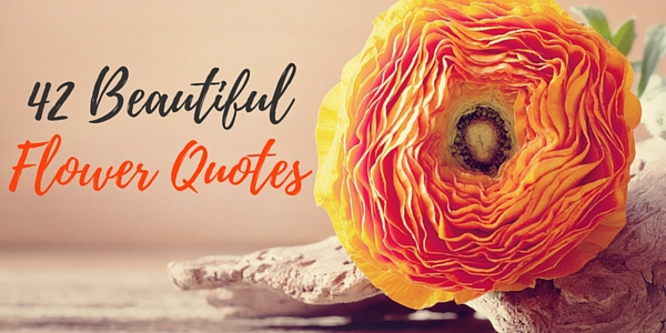 Flower Quotes 1