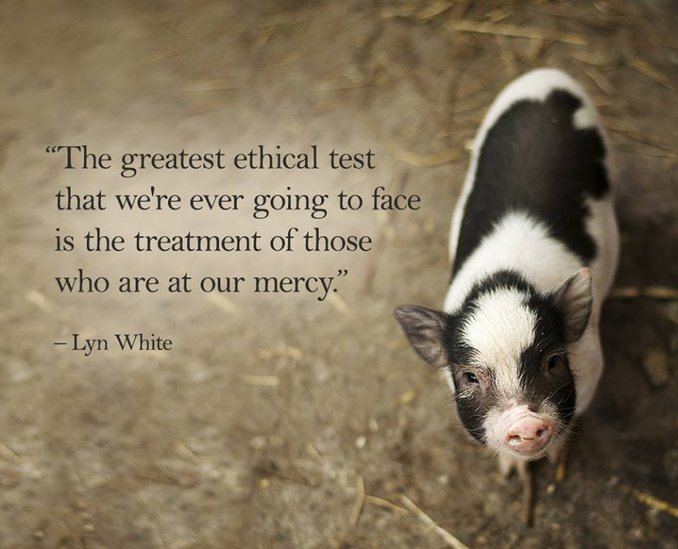 The Greatest Ethical Test Lyn White Daily Quotes Sayings Pictures