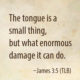 The Tongue Is A Small Thing