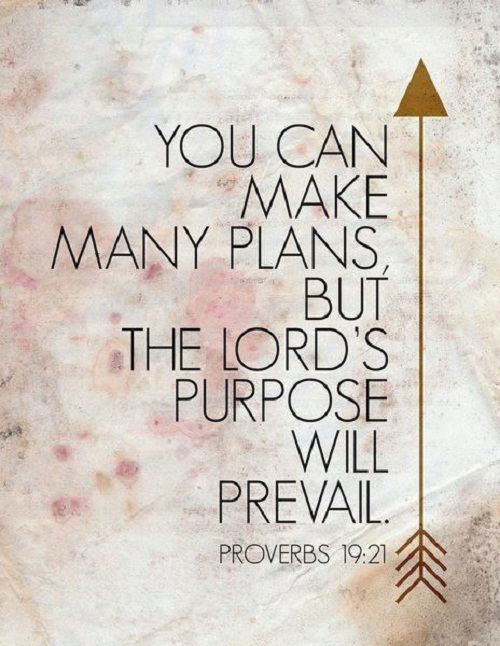 Lords Purpose Bible Quotes