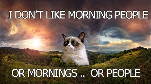 Morning People Funny Good Morning Quotes