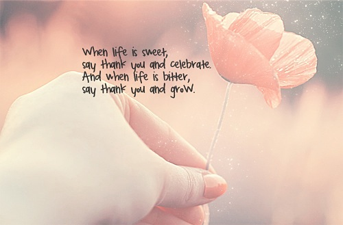 Life is Sweet Lovely Quotes