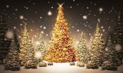 1493191317 712 31 Beautiful Merry Christmas Pictures