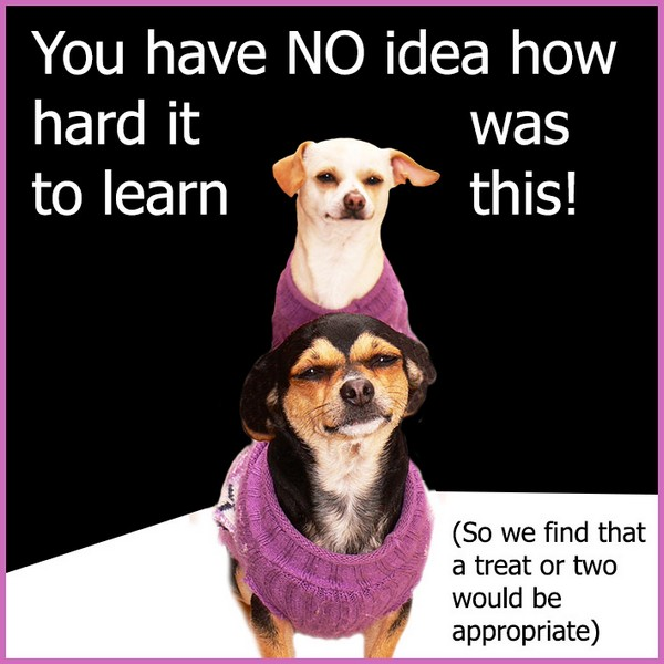 Dog Rescue Quotes