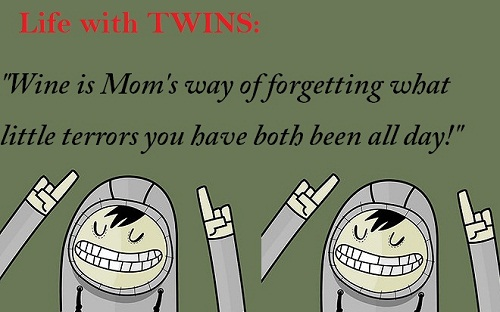 Life with Crazy Twin Quotes