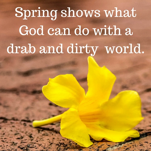 Yellow Spring Quotes