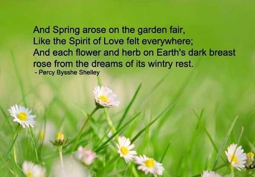 Sad Spring Quotes with Images