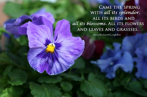 Famous Happy Spring Quotes