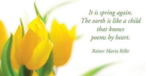 Spring Quotes with Image