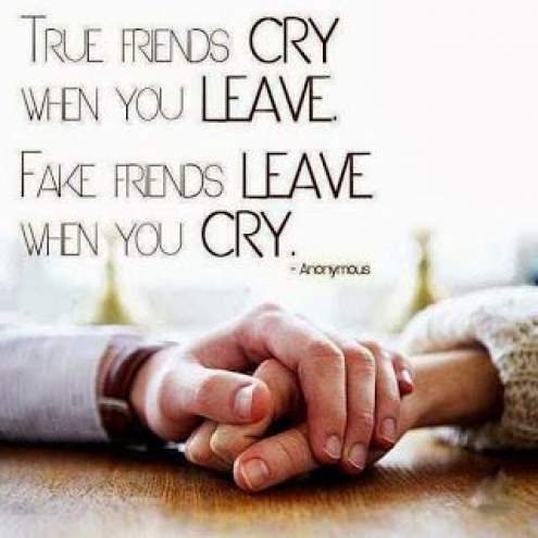 comparison between fake and real friends quotes
