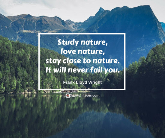 30 Beautiful Nature Quotes Word Porn Quotes Love Quotes Life Quotes Inspirational Quotes