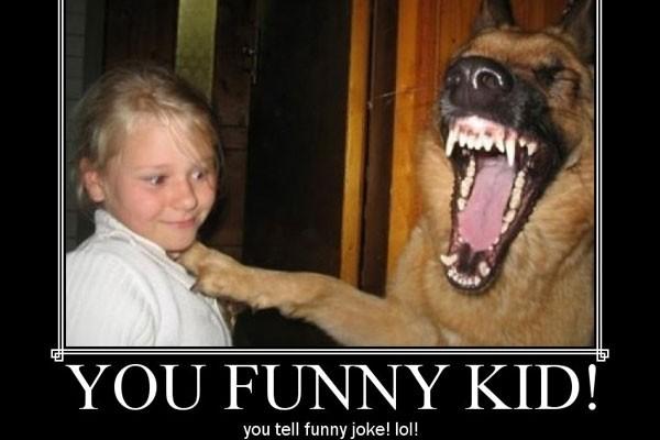 Dog Sayings