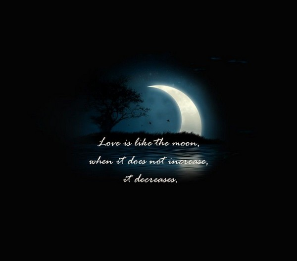 Philosophical Love Quotes