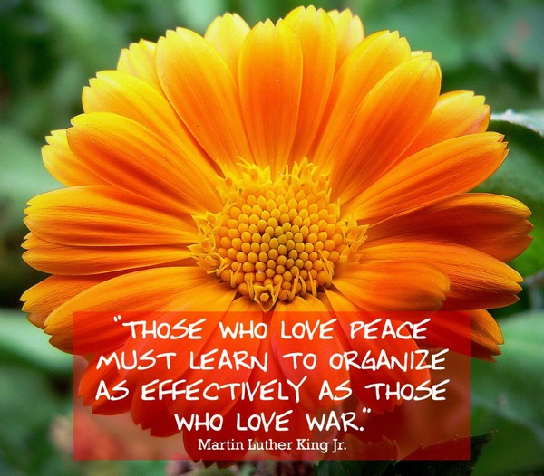 Martin Luther Quotes On War