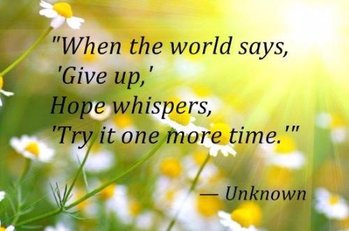 Amazing Best Quotes of Encouragement