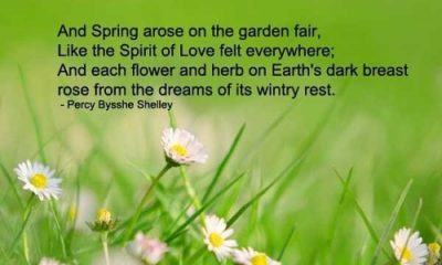 1503975955 199 31 Spring Quotes And Sayings With Images