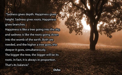 Sad Osho Quotes About Life