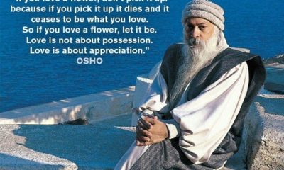 1508225247 891 52 Best Osho Quotes On Love Life And Fear With Images