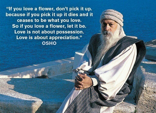 52 Best Osho Quotes On Love Life And Fear With Images
