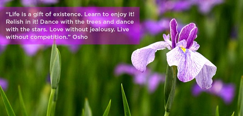 Inspirational Osho Quotes on Life
