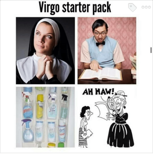 20 Best Virgo Memes Astrology Special Word Porn Quotes Love