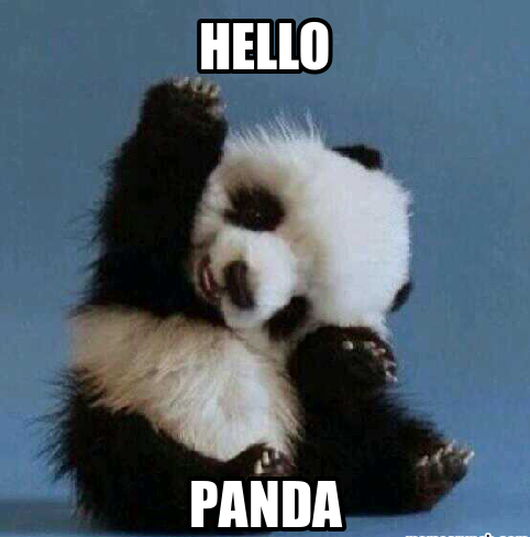 20 Incredibly Cute And Funny Panda Memes Word Porn Quotes Love