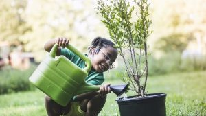 gardening and good benefits to mental health