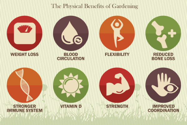6 Ways How Gardening Benefits Mental Health Like Good Therapies Do