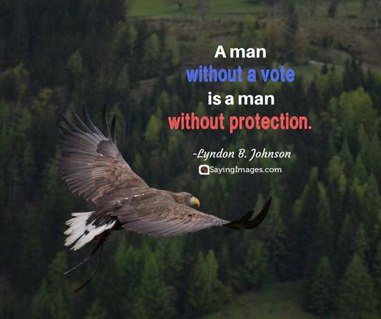 lyndon b johnson vote quotes