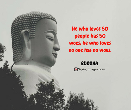 buddha love and woe quotes