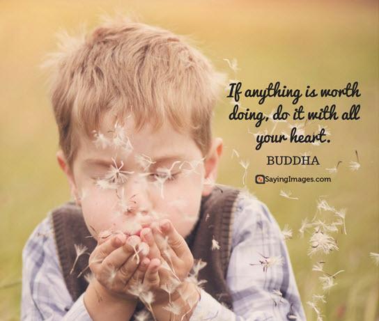 buddha heart quotes
