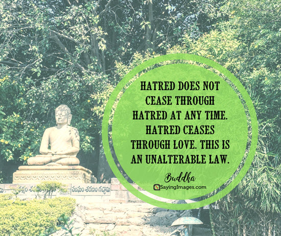 buddha hatred quotes