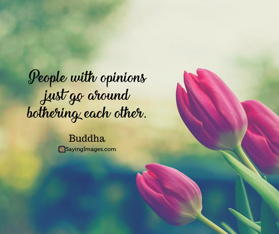 buddha opinion quotes