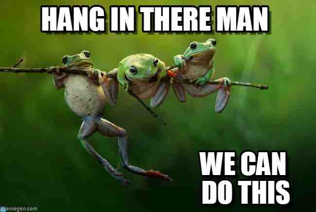 1518259261 460 20 Hang In There Meme To Motivate You