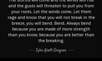 The Storms Will Come Tyler Knott Gregson Daily Quotes Sayings Pictures