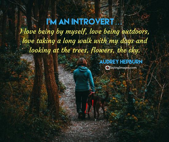 audrey hepburn introvert quotes