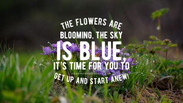 Good Morning Images With Flowers And Quotes